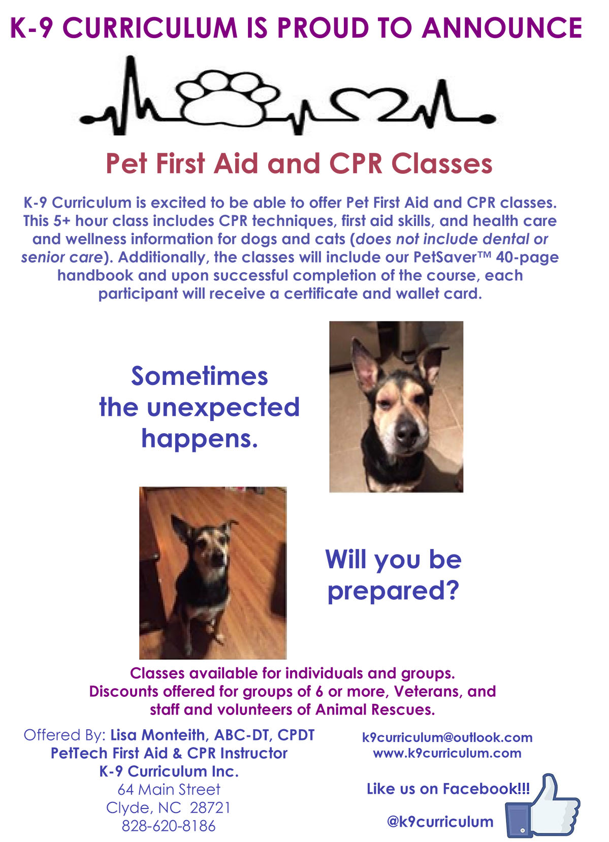 Pet First Aid and CPR Classes